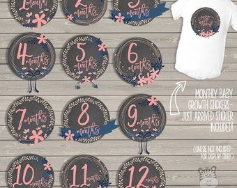 Baby monthly milestone stickers - adorable pink flowers