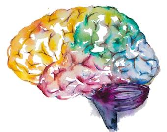 Pintura acuarela--imprimir acuarela, cerebro cerebro imprimir, arte médico, arte ciencia, Ilustración de la anatomía, anatomía moderna