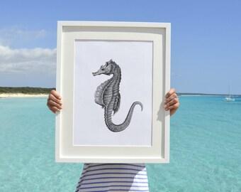 Sea horse in grey .Wall decor A3 plus  poster  seahorse poster -seaside art SAS058A3P