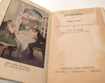 Antique Hardcover German Book Immensee by Theodor Storm 1916