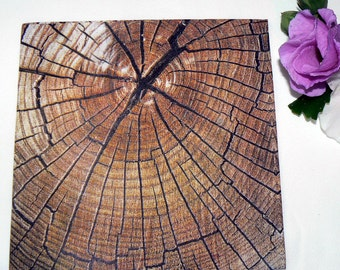 2 Oak tree image Napkins from Germany