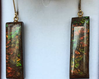 Ammolite Earrings - Long and Earthy