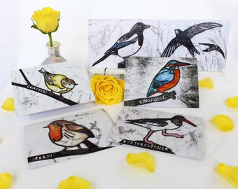 Pack of Six British Bird Cards   Greetings Cards   This card pack includes Kingfisher Goldcrest Oystercatcher Magpie Robin Swift