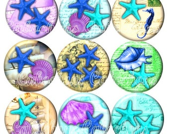 Set of 15 cabochons 25mm glass, holiday, shells, starfish, seahorse ref ZC240