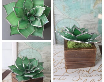 stained glass succulent sculpture