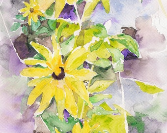 Black-eyed Susan Print 18 inches x 12 inches