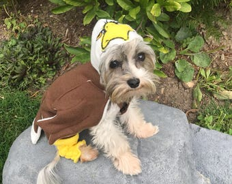 Eagle Dog Costume for smaller breed dogs