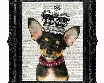 Princess Chihuahua Dictionary Art Print, Book Art, wall Decor,  upcycled vintage dictionary page book art print Animals page print
