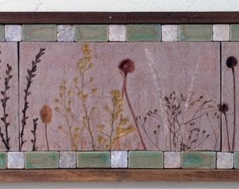 Door County Wildflowers