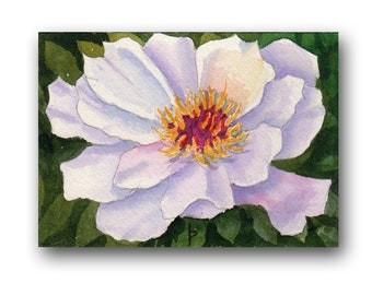 ACEO watercolor PEONY original painting SFA miniature  dollhouse mini