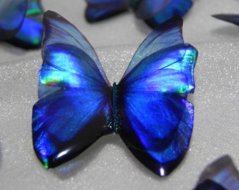Sparkling small blue iridescent resin butterfly embellishment for art craft,card making , jewelry making, wedding bouquet,fairy garden