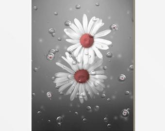 Coral Gray Bathroom Decor, Daisy Flowers, Bubbles, Decorative Modern Coral Home Decor Picture