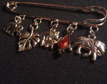 Brooch travels in India 2