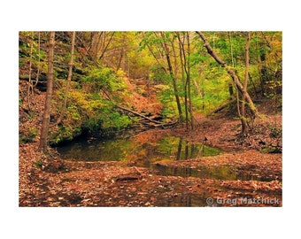 """Fine Art Color Landscape Photography of Matthiessen State Park in Illinois - """"Autumn in the Upper Dells 1"""""""