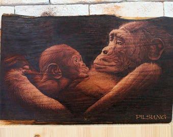 chimpanzee portrait pyrography. woodburning art