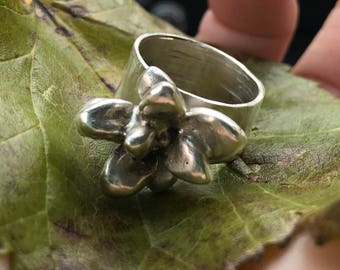 Succulent jewelry cast in silver or gold.  Featured ring is a size 6.