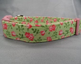 Dog Collar with Roses, Vining Pink Roses Girl Dog Collar