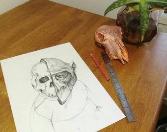 Contemporary gorilla skull drawing