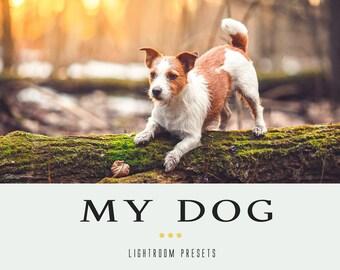 40 My DOG professional lightroom presets