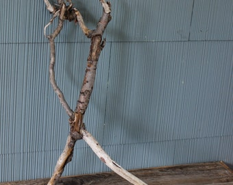 Unique Piece of Sculptural Driftwood , Make Your Own Wall Hanging , Nautical Decor