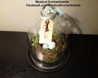 X Large Vintage Glass CLoche with nest, moss, eggs and skeleton key
