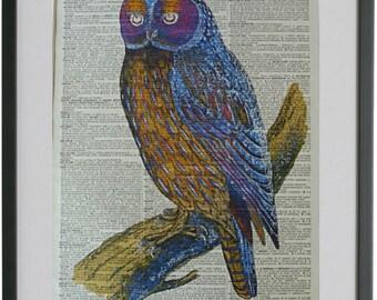 Owl Print No.368, owl decor, owl poster, bird poster, bird prints, girlfriend gift, boyfriend gift, owl illustration, dictionary art