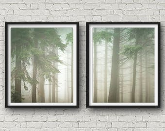 Scandinavian Print, Set Of 2, Nature Photography, Forest Print, Landscape Print, Wall Art, Posters, Prints Set, Tree Print, Nature Print,153