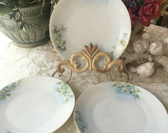 Lovely Set of 3 Antique Plates Hand Painted Forget Me Nots Silesia