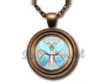 Brooch Image Collection: Insect Blue Wings Glass Dome Pendant or with Chain Link Necklace