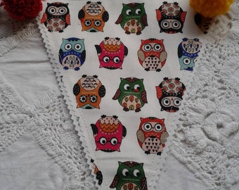 Colourful Owl Bunting