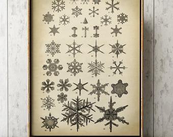 SNOWFLAKE Print, Flake of Snow Print, snowflake forms, geometric ice crystal, winter, scientific illustration