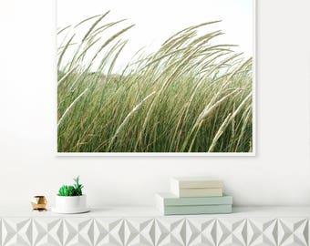 Wild Grass Print, Beach Print, Green Nature Photo, Fine Art Landscape photography, Botanical Print, Green Grass Print, Printable Wall Art