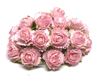 Small Light Pink Carnations Pc021