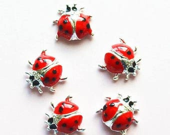 1 x cute little Ladybug red and silver.