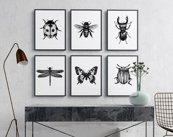 Set of 6 insect illustration Print, black and white, Wall Art, Printable Download, Bug print, hand drawn bugs, monochrome, insect poster.
