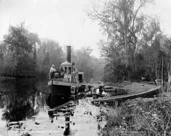 "Steam launch ""Princess"" at Browns Landing on Rice Creek, Florida. Photograph by William Henry Jackson"