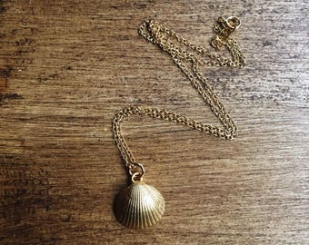 Pretty gold vermeil shell necklace, gold shell necklace