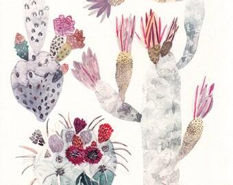 """Cactus Trio - 11"""" x 14"""" Archival Print"""