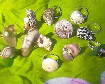 Hawaiian Seashell Ring, Adjustable, Made to Order