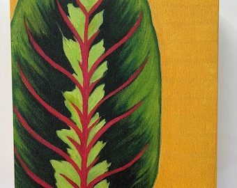 Giclee Print of original oil painting of Prayer plant, gallery wrapped, ready to hang canvas print, 6x6, 8x8, 10x10, 12x12, or