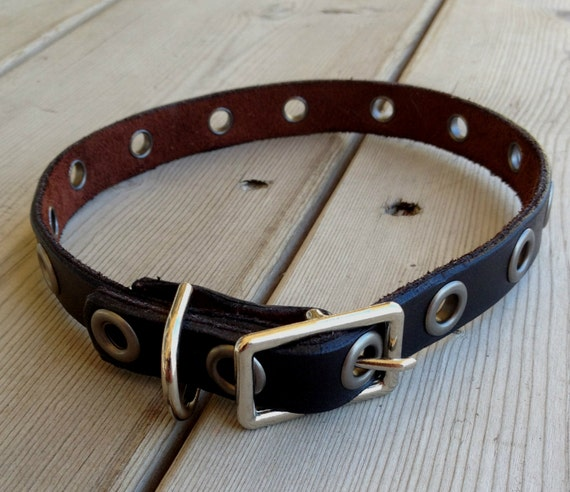 Leather dog collar eyelet small dog
