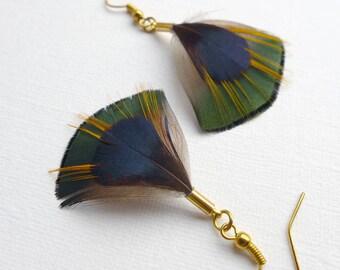 Feather Dangle Earrings, Golden Pheasant feather earrings