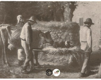 Art Institute of Chicago Bringing Home The New Born Calf by Jean Francois Millet Vintage Postcard