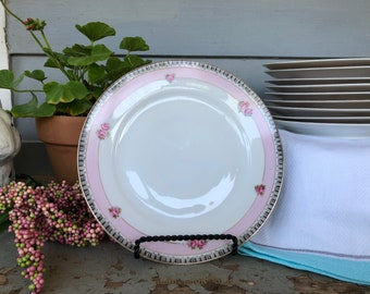 Adorable Set of 10 Vintage Dessert/Salad Plates. Perfect for Weddings, Bridal Showers, Mad Hatter's Tea Party, Shabby Chic Decor