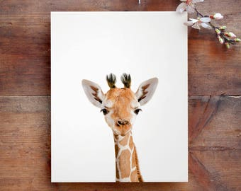 Safari nursery art, Giraffe print, PRINTABLE art, Safari animals wall art, Baby giraffe, Safari nursery decor, Safari theme,Nursery wall art
