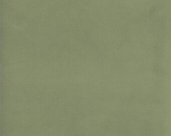 Designer Agave Green Bella Velveteen Home Decorating Fabric, Fabric By The Yard