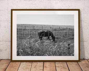Equestrian Gifts, Horse Wall Decor, Horse Decor, Horse Art Print, Animal Photos, Animal Lover, Black Home Decor, Art Prints Black and White