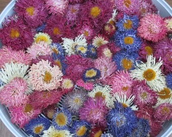 Dried flowers, 40 aster flowers, Michaelmas daisies, flower toss, dried flower confetti, wedding confetti, craft supply, biodegradable