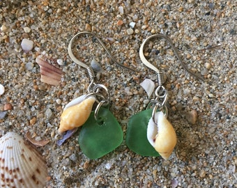 Seaglass w/ seashell earrings