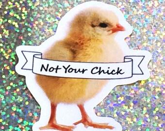 Not Your Chick Feminist Sticker, Laptop Sticker, ipad sticker, Phone Case Sticker